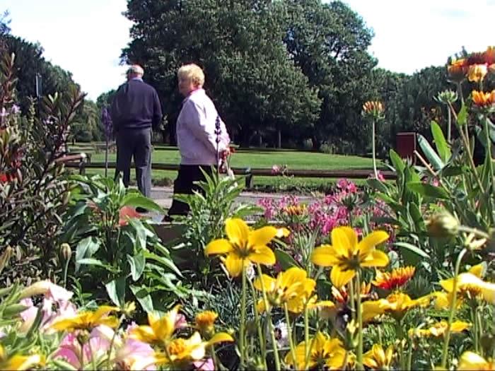 involved friends garden